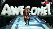 WWE 2K14 Screenshot.70