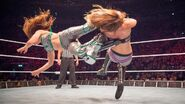 WWE Live Tour 2017 - Dublin 12