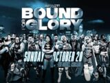 Bound for Glory XV