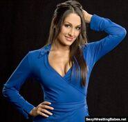 Nikki Bella.10
