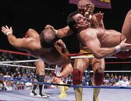 Royal Rumble 1989.3