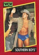 1991 WCW (Impel) Southern Boys 137