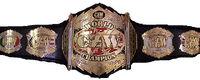 CZW World Heavyweight Championship