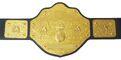 WCW World Heavyweight Championship