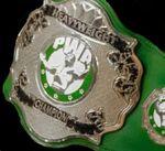 PWA Heavyweight Championship