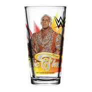 Ric Flair 2018 Toon Tumbler Pint Glass