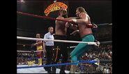 Survivor Series 1989.00021