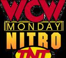 November 25, 1996 Monday Nitro results