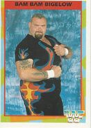 1995 WWF Wrestling Trading Cards (Merlin) Bam Bam Bigelow 24