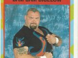 1995 WWF Wrestling Trading Cards (Merlin) Bam Bam Bigelow (No.24)