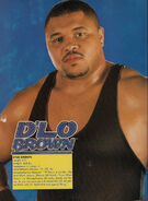Dlo brown (2)