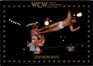 1991 WCW Collectible Trading Cards (Championship Marketing) Southern Boys 106