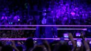 WrestleMania 33.146