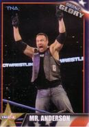 2013 TNA Impact Glory Wrestling Cards (Tristar) Mr. Anderson 21