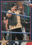 2013 TNA Impact Glory Wrestling Cards (Tristar) Taz 55