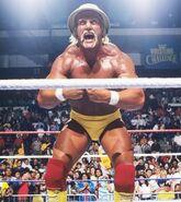 Hulk Hogan 50