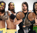 Money in the Bank 2013/Image gallery