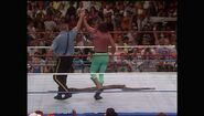 SummerSlam 1990.00036
