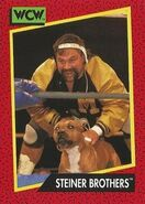 1991 WCW (Impel) Steiner Brothers 109