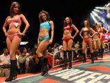 Edecánes del CMLL