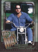 2002 WWF All Access (Fleer) Big Show 55