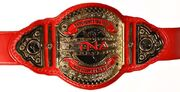 TNA Knockout Tag Team Championship