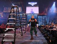 WrestleMania 22.8