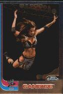 2008 WWE Heritage III Chrome Trading Cards Candice 59