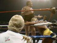 Hulk Hogan The Ultimate Anthology 5
