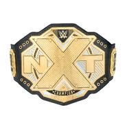 NXT Championship Replica Title (2017)