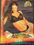 2001 WWF The Ultimate Diva Collection (Fleer) Lita 93