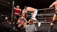 NXT 294 Photo 05