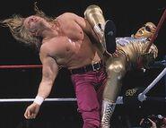 Royal Rumble 1997.5