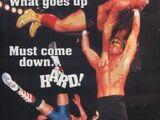 Slamboree (1996)