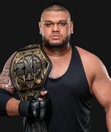 WWEAOPAkamNXTTagChampion