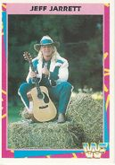 1995 WWF Wrestling Trading Cards (Merlin) Jeff Jarrett 110