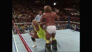 SummerSlam 1990.00008