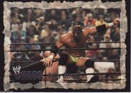 2004 WWE Chaos (Fleer) Billy Gunn 37