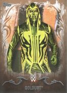 2016 Topps WWE Undisputed Wrestling Cards Goldust 14