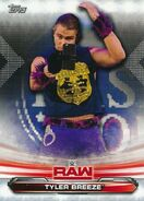 2019 WWE Raw Wrestling Cards (Topps) Tyler Breeze 72