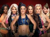 Royal Rumble 2019 Woman's Royal Rumble match