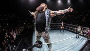 WWE World Tour 2017 - Hamburg 2