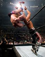 WrestleMania 21.15