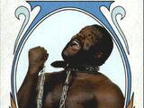 2008 WWE Heritage IV Trading Cards (Topps) Junkyard Dog (No.85)