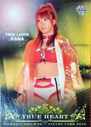 2010 BBM True Heart Japanese Women's Pro Wrestling Kana 74