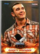 2013 TNA Impact Wrestling Live Trading Cards (Tristar) Garett Bischoff 59