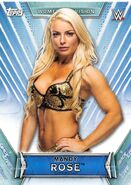 2019 WWE Women's Division (Topps) Mandy Rose 23