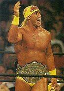 Hulk Hogan 15