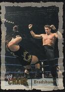 2004 WWE Chaos (Fleer) Bradshaw 39