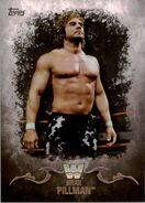 2016 Topps WWE Undisputed Wrestling Cards Brian Pillman 50
